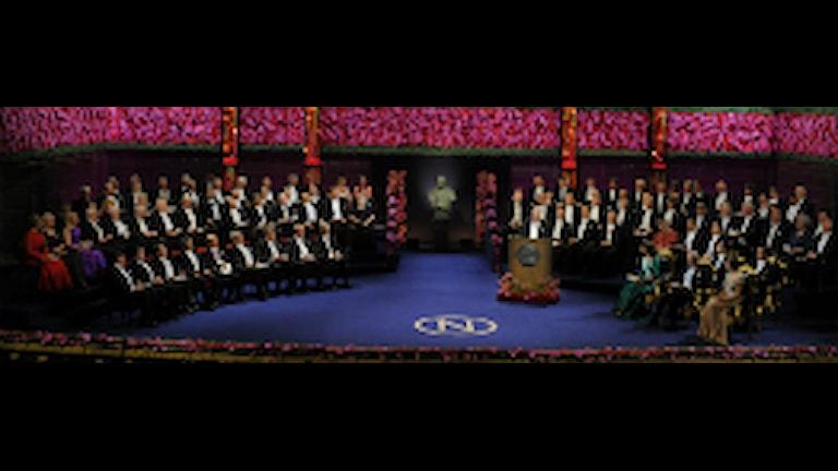 Nobelpristagarna 2010 tar plats i konserthuset vid nobelprisutdelningen på fredagen Foto: Claudio Beresciani / AP