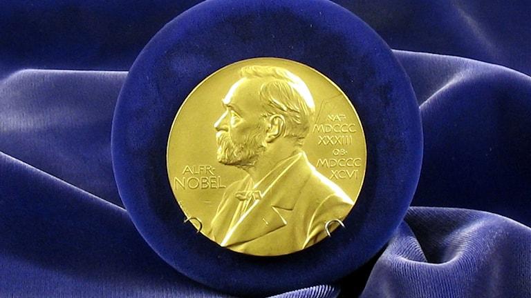 Nobelprismedalj mot blå bakgrund. Foto: Tim Ereneta/CC (flickr.com/tereneta)