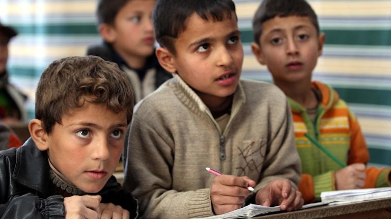 Skolpojkar i flyktingläger