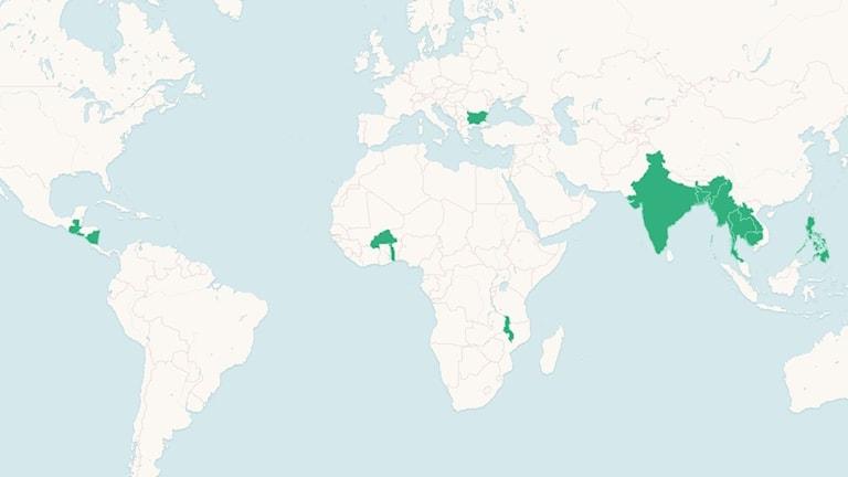 Världskarta där länderna som beviljats bidrag från Radiohjälpen är märkta i grönt