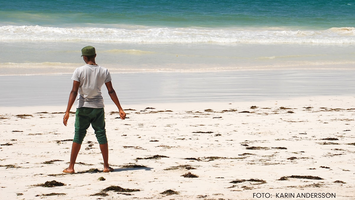 En pojke i keps står på en strand med ansiktet vänt mot havet och ryggen vänd mot kameran.
