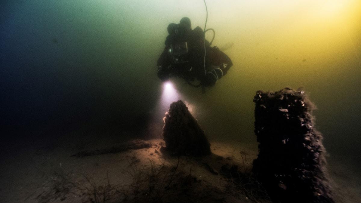 En dykare i vattnet som lyser på vraket från skeppet.