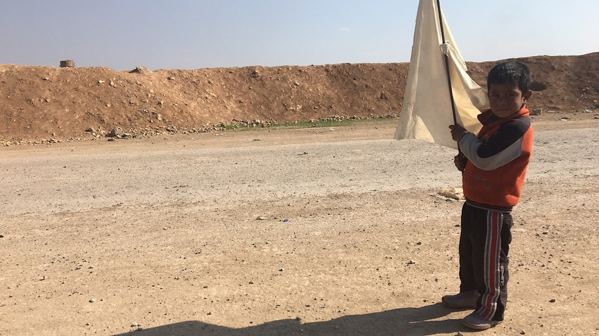 Ett barn i Mosul håller upp en vit flagga.