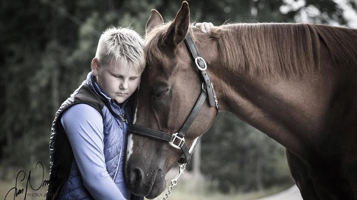 Arvi Martikainen ja hevonen.