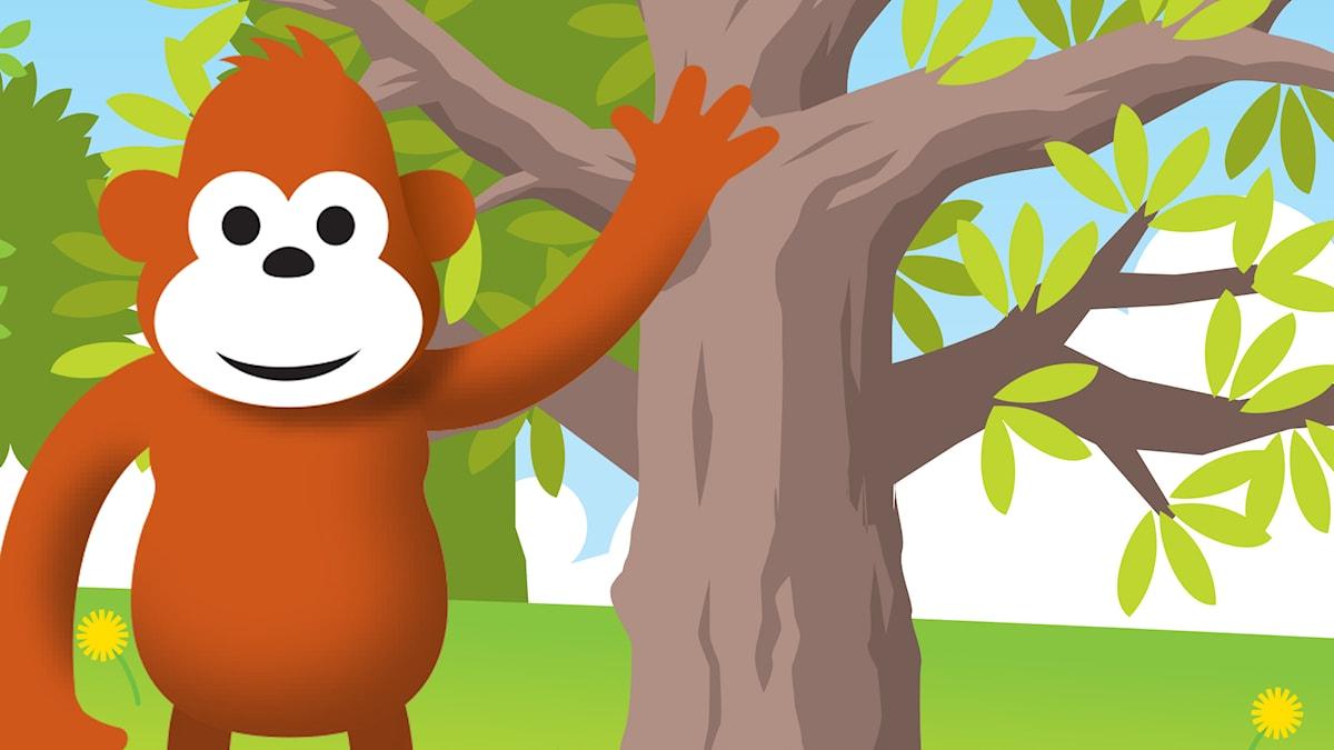 Gorilja metsässä
