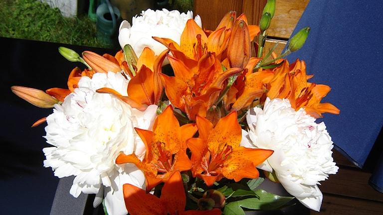 Kesäkuun kukkasia