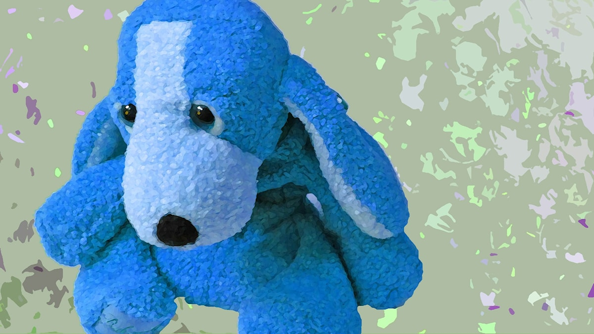 Kuvassa on surullinen sininen koira