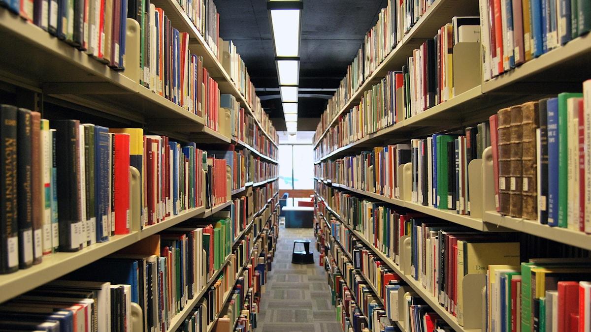 Kuvassa kirjaston hyllyjä