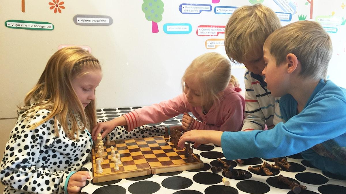Kuvassa Sanni, Nella, Oskar ja Sami järjestävät shakkinappulat oikein.