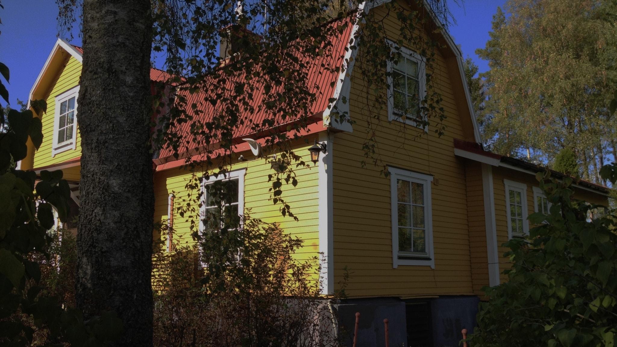 Tarina: Iiris-tädin talo