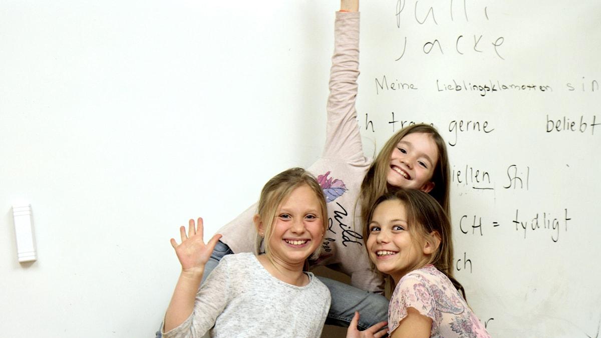 Levyraatilaiset Sofia, Elina ja Amelia.