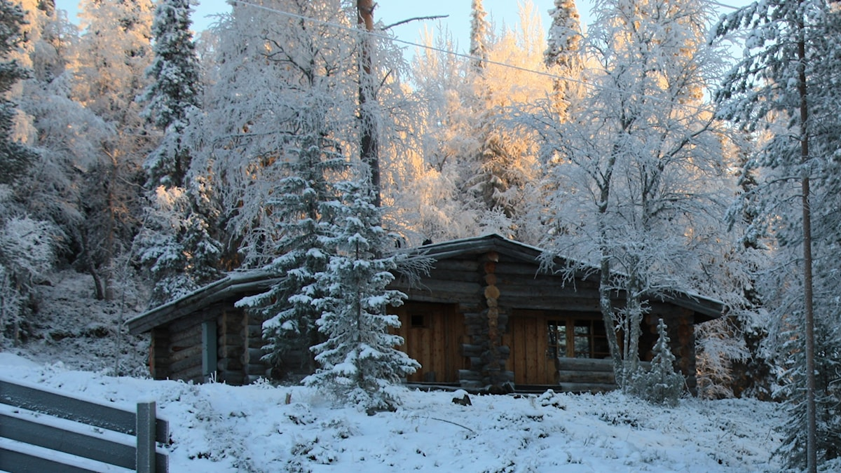 Talvinen mökki