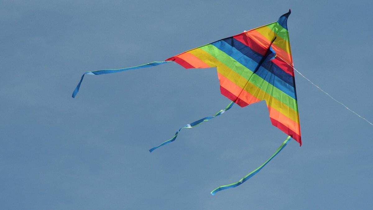 Värikäs leija lentää