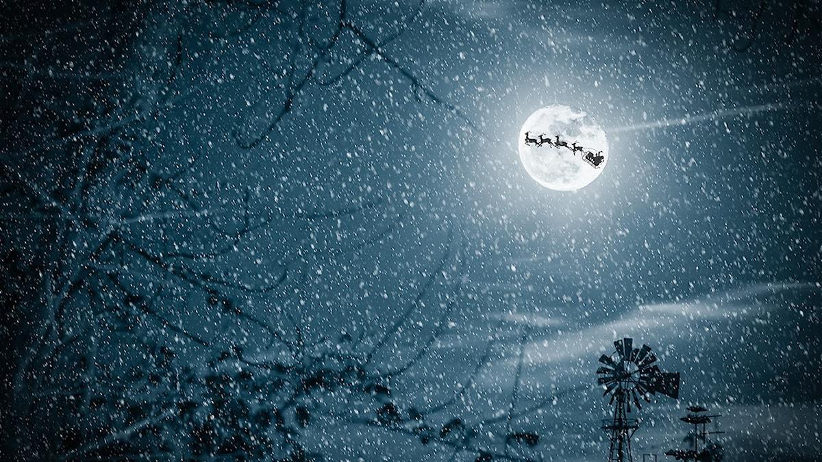 Joulupukin rekimatka