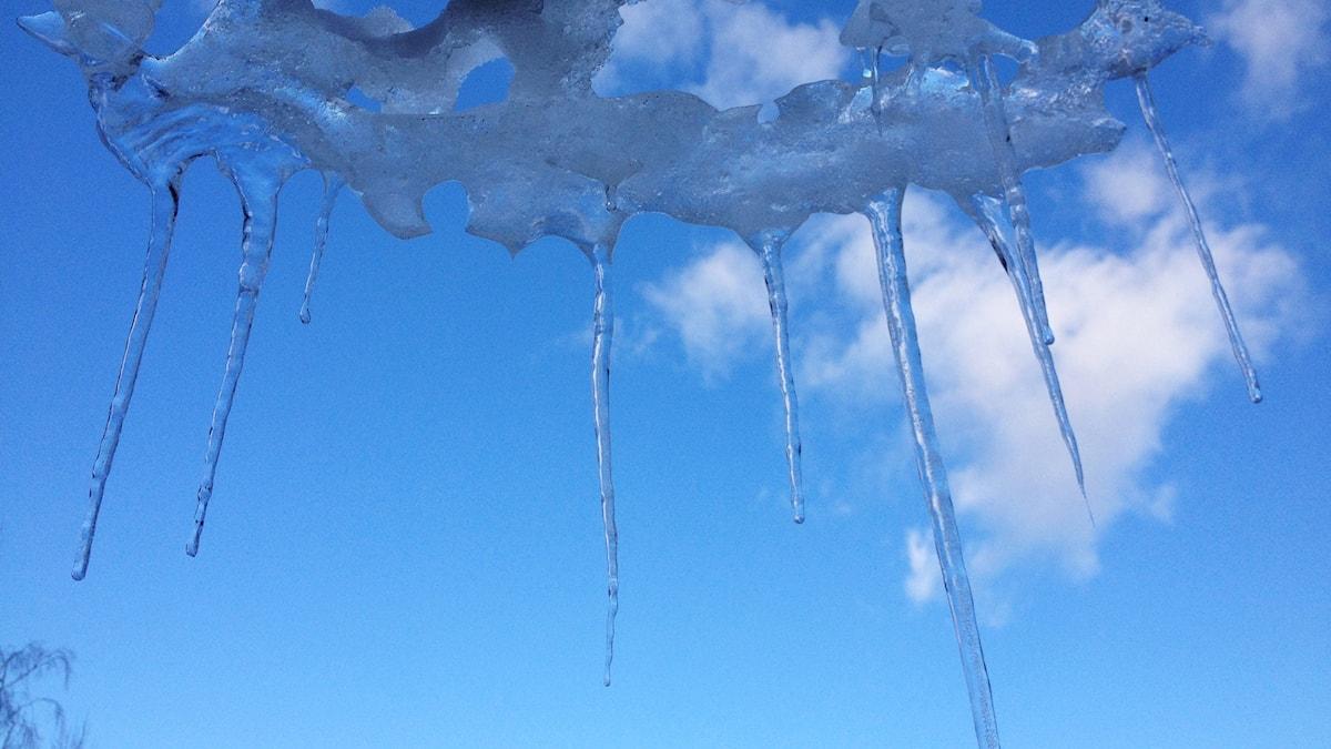 Jääpuikkoja taivasta vasten