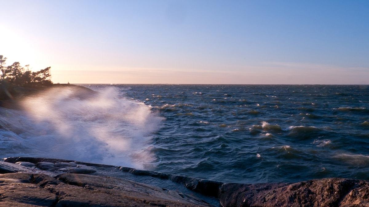 Tuulinen meren ranta