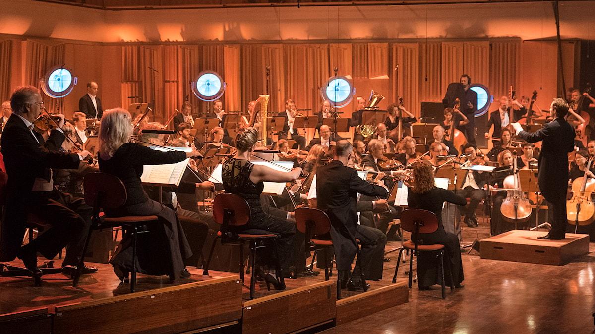 Sveriges Radios Symfoniorkester. Foto: Arne Hyckenberg.