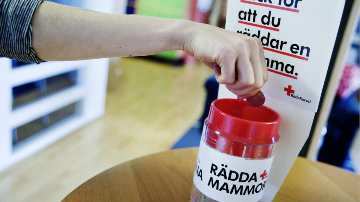 En insamlingsbössa för Röda korsets kampanj Rädda Mammorna 2009. Foto: Erik Abel/Scanpix.