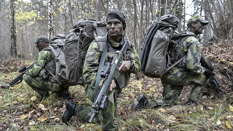 Swedish soldiers on exercise outside Karlsborg. Photo: Anders Wiklund / TT