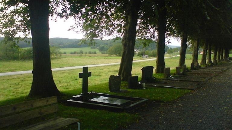 Kyrkogård. Foto: Wikimedia Commons.