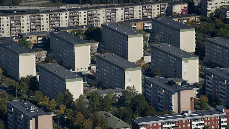 Flygfoto över Tensta i Stockholm. Foto: Jonas Ekströmer/TT