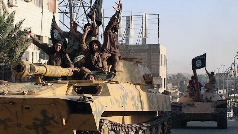 Rebeller från den islamistiska terrorgruppen Isis åker i stridsvagn i Raqqa i Syrien. Foto: Raqqa Media Center/TT.