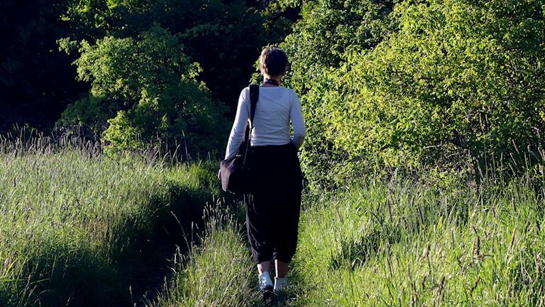 Kvinna går på en sommaräng. Foto: Hasse Holmberg/TT.