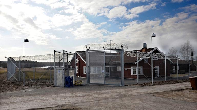 Ett rött trähus bakom höga staket är ett av de slutna vårdhem som Statens Institutionsstyrelse har. Blå himmel med vita moln. Foto: Maja Suslin/TT.