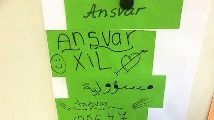 Ordet ansvar på olika språk, på en tavla på Sprintgymnasiet i Stockholm. Foto: Anders Ljungberg/Sveriges Radio.