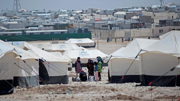 Ett flyktingläger i Jordanien dit många syrier kommer. Vita tält märkta med UNHCR:s blåa logga på taket. Ökenliknande landskap. Foto: Khalil Hamra/TT.