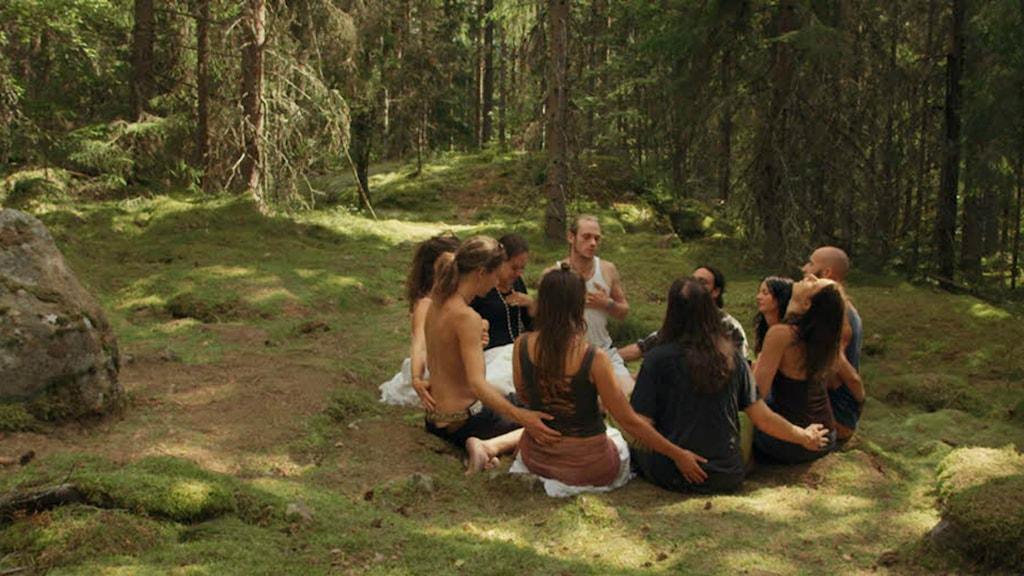 Erik Gandinis The Swedish Theory of Love. Foto: Svensk Filmindustri