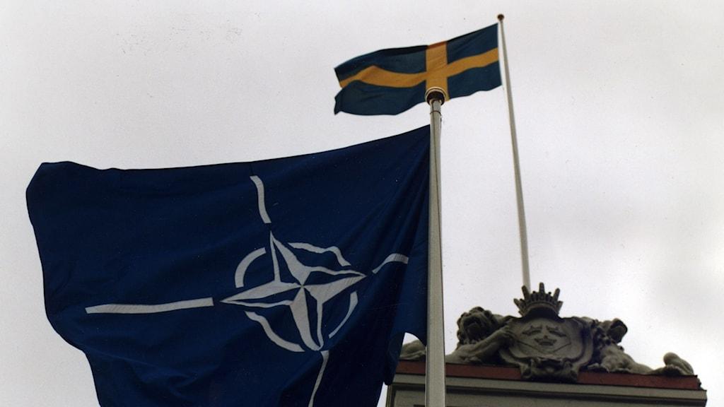 Natoflaggan vajar tillsammans med svenska flaggan utanför utrikesdepartementet. Foto: Hans T Dahlskog/Scanpix.