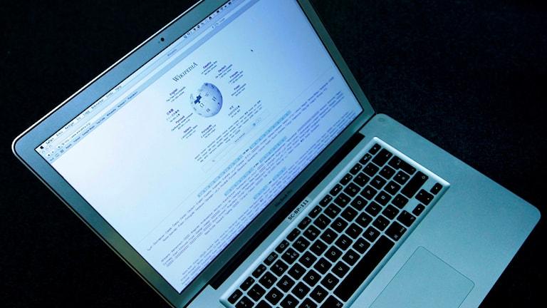 Det digitala uppslagsverket Wikipedia fyller 15 år i år. Foto:  Håkon Mosvold Larsen/TT.
