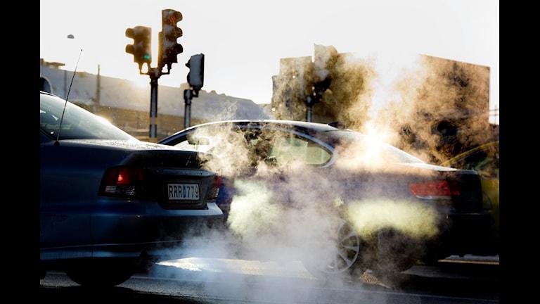 Bilar släpper ut avgaser. Foto: Pontus Lundahl/TT
