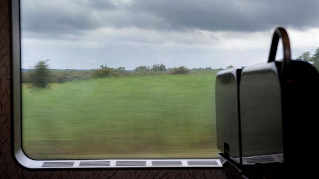 Utsikt över landskap från tågfönster