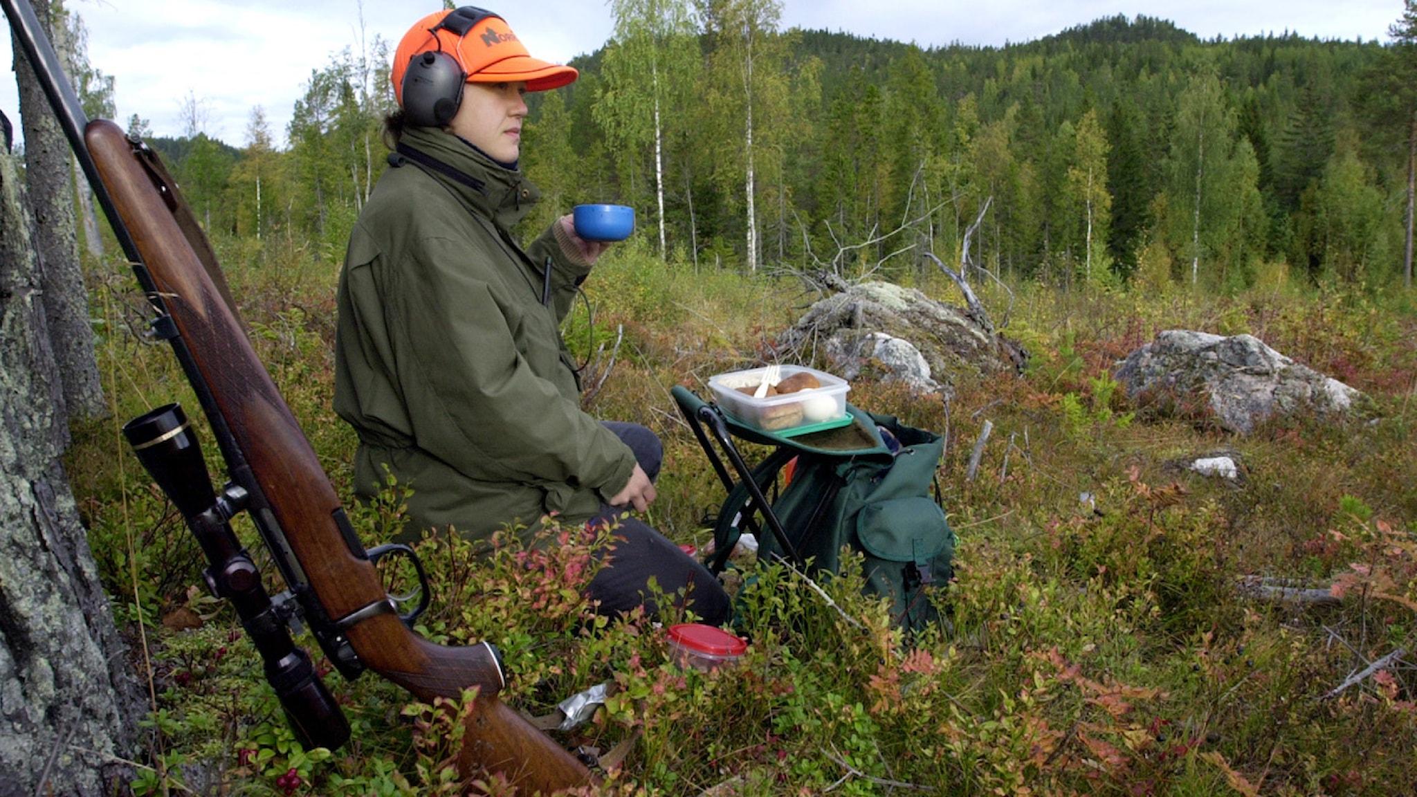 Hur går viltvård och älgjakt ihop? Foto: Gunnar Lundmark SvD (code 30102)