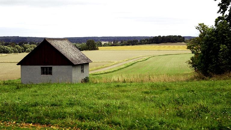 Någon som vill flytta hit?  Foto: Hasse Holmberg / Scanpix