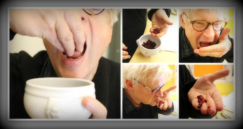 Thomas Nordegren äter lingon. Foto: Ronnie Ritterland / Sveriges Radio