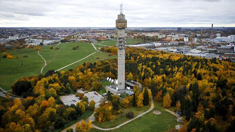 Flygbild över Kaknästornet med Ladugårdsgärde, Gärdet, på norra Djurgården Foto: Bertil Ericson / TT