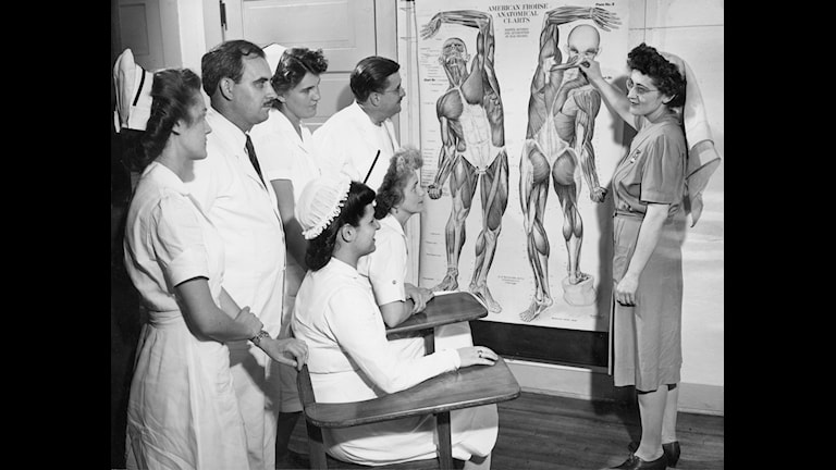 Anatomilektion i USA 1948 Foto: Scanpix