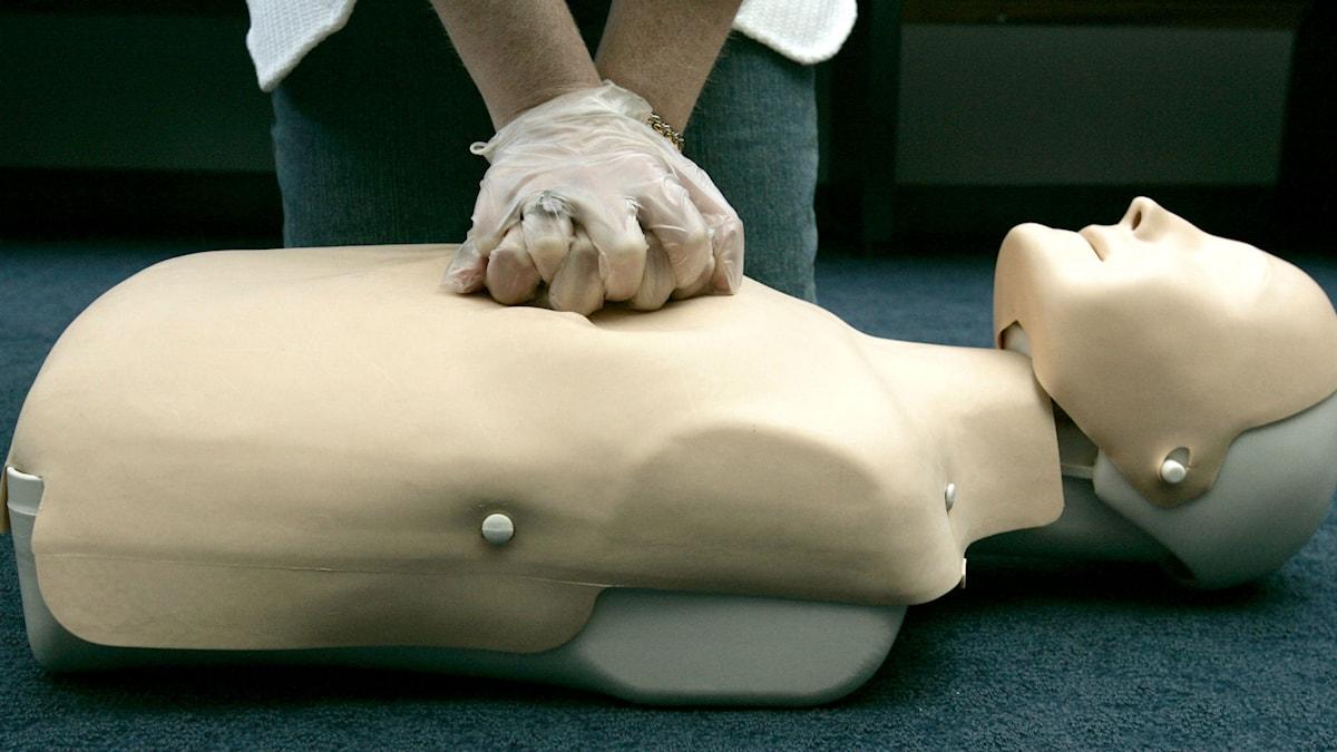 Hjärt- och lungräddning kan man gå kurs i. Skulle du våga använda en hjärtstartare utan utbildning? Foto: Maxim Shipenkov/TT