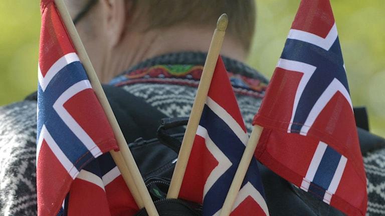 Varför kritiseras Norge? Foto: Bertil Enevång Ericson / TT