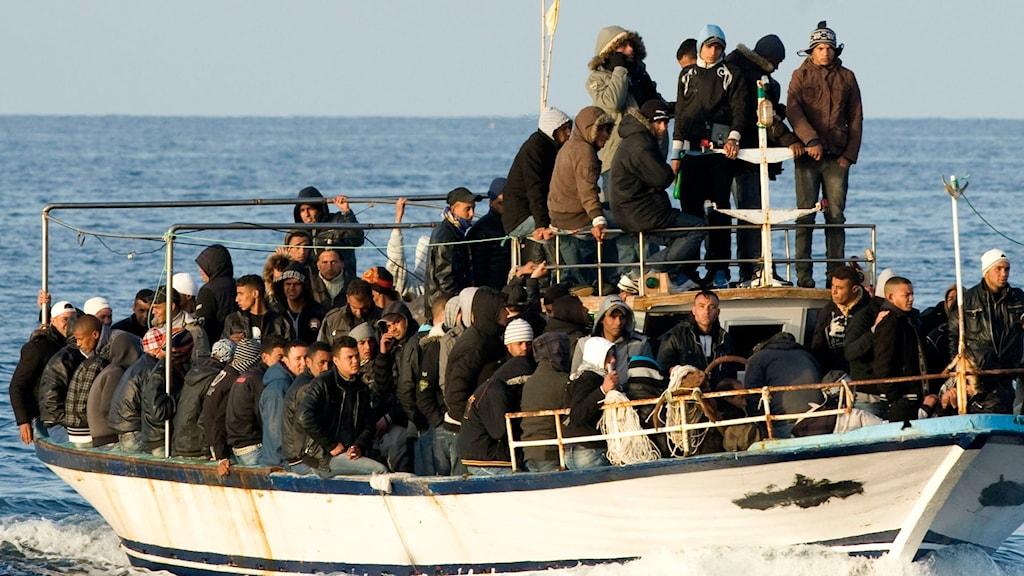 Båtflyktingar 2011