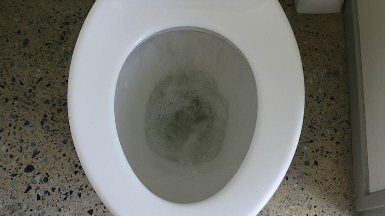 Toalett som spolas