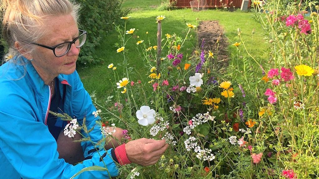 Elisabeth Ögren vid blommor.