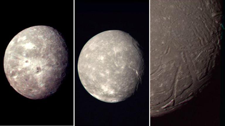 Uranus månar Oberon, Titania och Ariel.