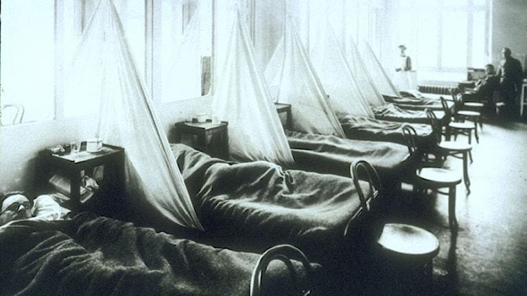 Sjuka soldater under 1a världskriget på ett amerikanskt fältsjukhus i Frankrike.