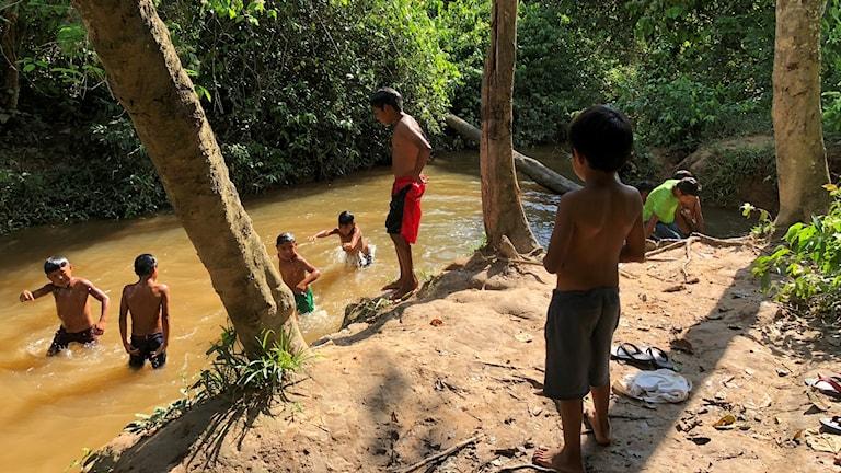 Flera barn badar i en flod i regnskogsmiljö.