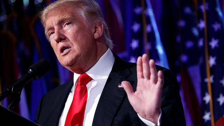 Donald med hand