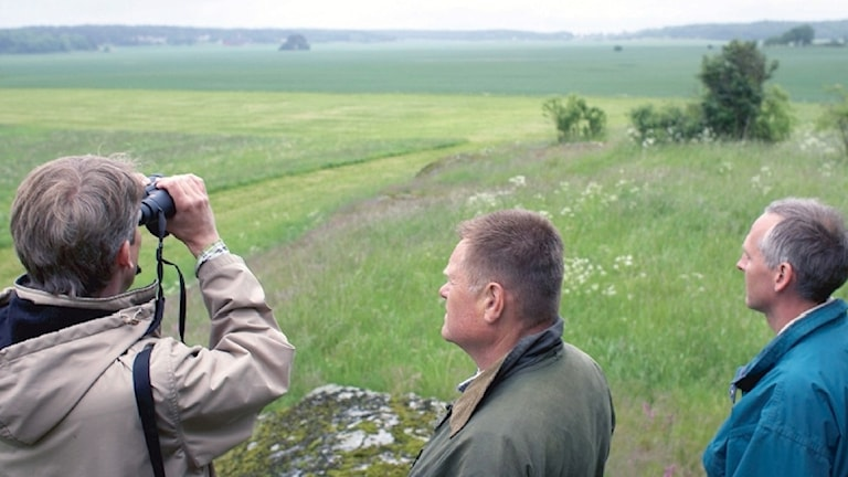 Tre män tittar ut över en åker, en av dem spanar efter fåglar i en kikare.